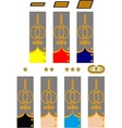 Sleeve and collar insignia of officers CSA vector image