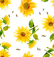 The Composition of Yellow Sunflower vector image vector image