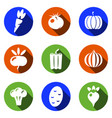 vegetables icons set modern solid symbol vector image