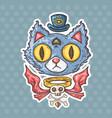 cartoon mysterious cat vector image vector image