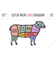 Cut of beef set Poster Butcher diagram and scheme vector image vector image