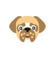 cute pug dog head funny cartoon animal character vector image vector image