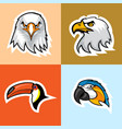 eagle parrot and toucan logo set vector image