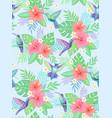hummingbirds exotic pattern vector image