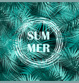 palm tree branches on dark background vector image vector image