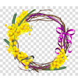 yellow mimosa flower branch with wreath with red vector image vector image