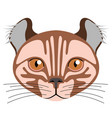 avatar of a cat cat breeds vector image