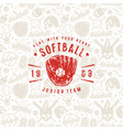 baseball seamless pattern and emblem of softball vector image