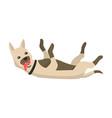 happy cartoon puppy portrait cute little dog vector image vector image