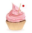 Japanese Cupcake vector image vector image
