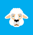 lama alpaca sad face avatar animal sorrowful emoji vector image vector image