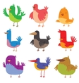 Funny birds doodle cartoon collection wing animal vector image