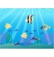 beautiful fish vector image
