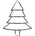 tree pine isolated vector image