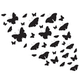 Butterfies flying around vector image vector image