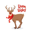 christmas card cartoon rudolph red nose reindeer vector image