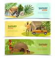 safari banner set vector image