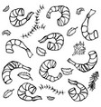 background with cooked shrimps and herbs vector image vector image