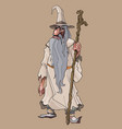 cartoon bearded fairy old man with a staff vector image