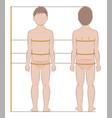 child body measurements vector image