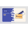 credit card advertising vector image