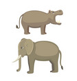 elephant and hippo vector image