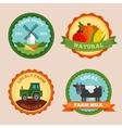 Flat Farm Emblem Set vector image vector image