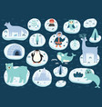 north pole characters set arctic animals cute vector image vector image