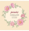 peonies frame vector image vector image