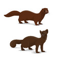 sable and mink cartoon animal vector image