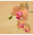 polygonal mosaic of orchid vector image