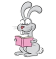 Rabbit reads a book vector image vector image