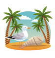 stork in the beach vector image vector image