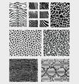 animal skins vector image