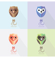 Flat owl icons vector image
