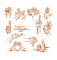 hands in different gestures on white background vector image