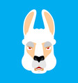 lama alpaca angry face avatar animal evil emoji vector image vector image