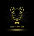rat symbol year vector image