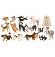 set funny dogs collection cartoon playing vector image