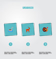 set of alive icons flat style symbols with goose vector image