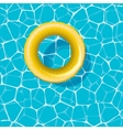 Swimming circle on the water vector image vector image