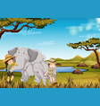 zookeeper with elephant in the zoo vector image