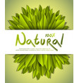 100 percent natural card with fresh green leaves vector image vector image