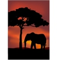 African Sunset background with elephant vector image