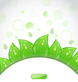 Eco brochure with fresh green leaves and emblem vector image