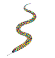 snake color vector image vector image