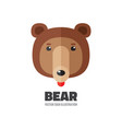 bear head - logo template vector image