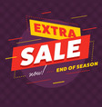 bright banner for extra sale vector image