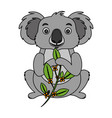 koala eating branch eucalyptus vector image
