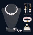 pearl jewerly collection - necklace vector image